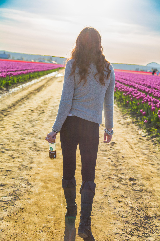 tulips-0732