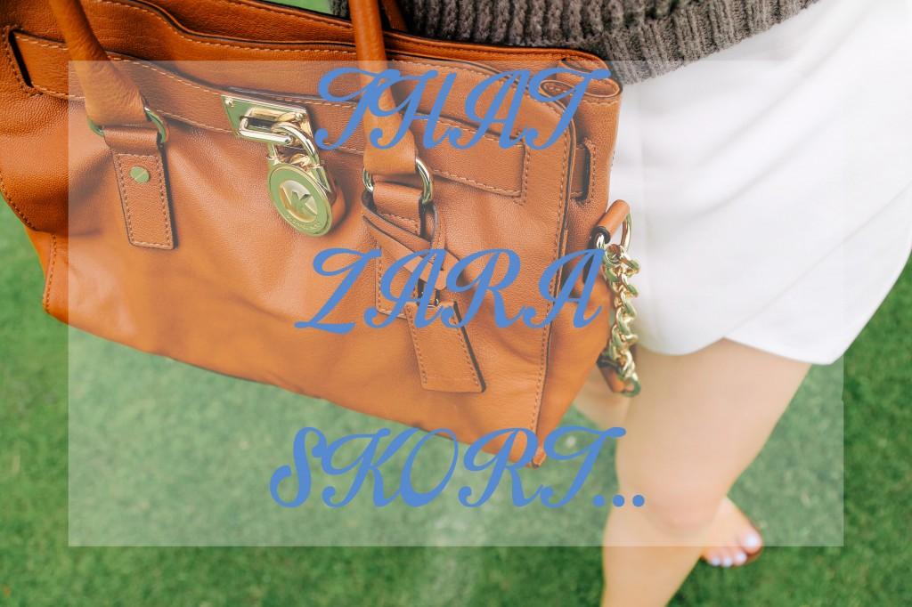 excuse-my-blog-that-zara-skort-1