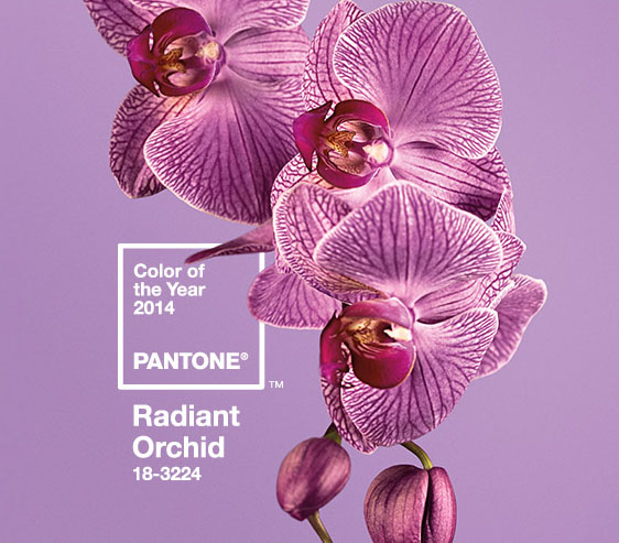 excuse-my-blog-pantones-color-of-the-year-2